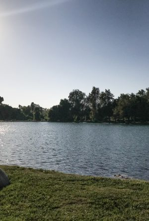 Rancho Jurupa Park campground | #camping in Southern California | scoutofmind.com